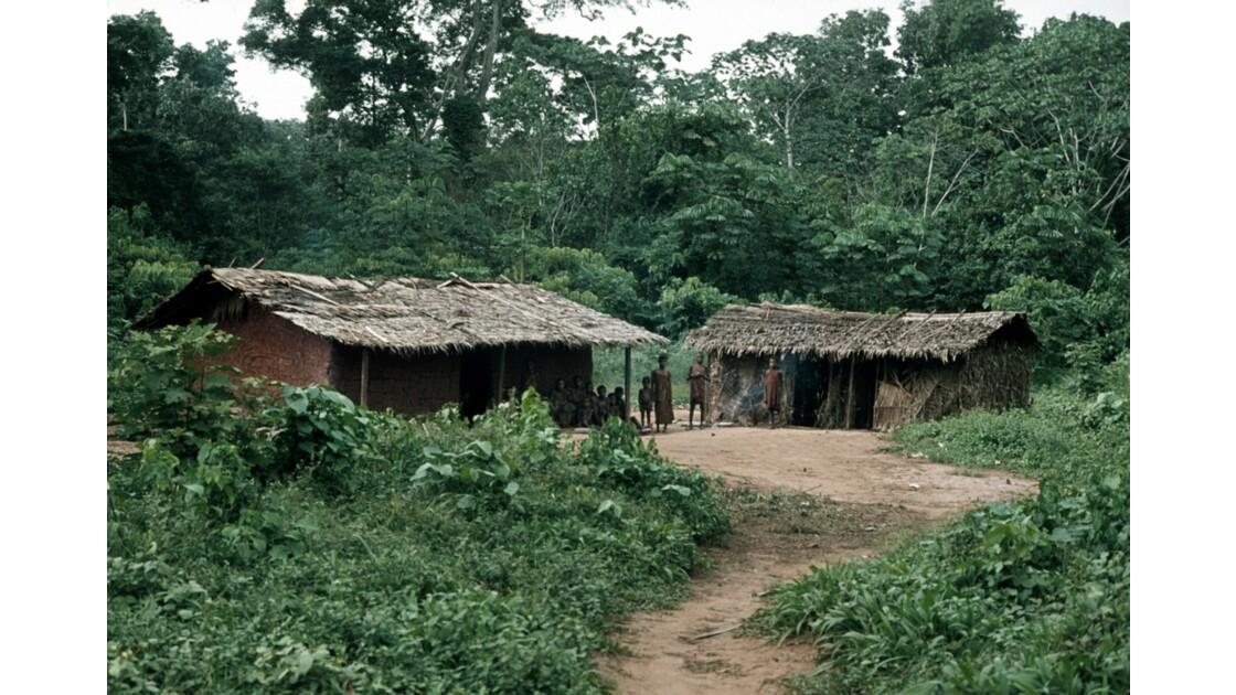 Congo 70 Village pygmée près de Ouesso 4