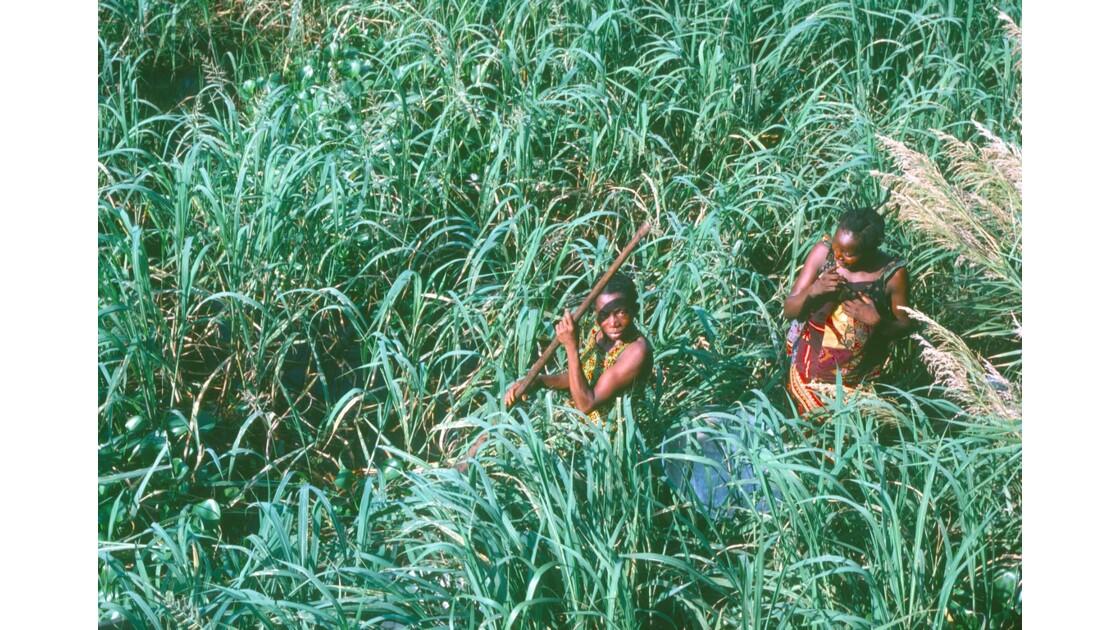 Congo 70 D'Impfondo à Brazzaville Sur les rives de l'Oubangui