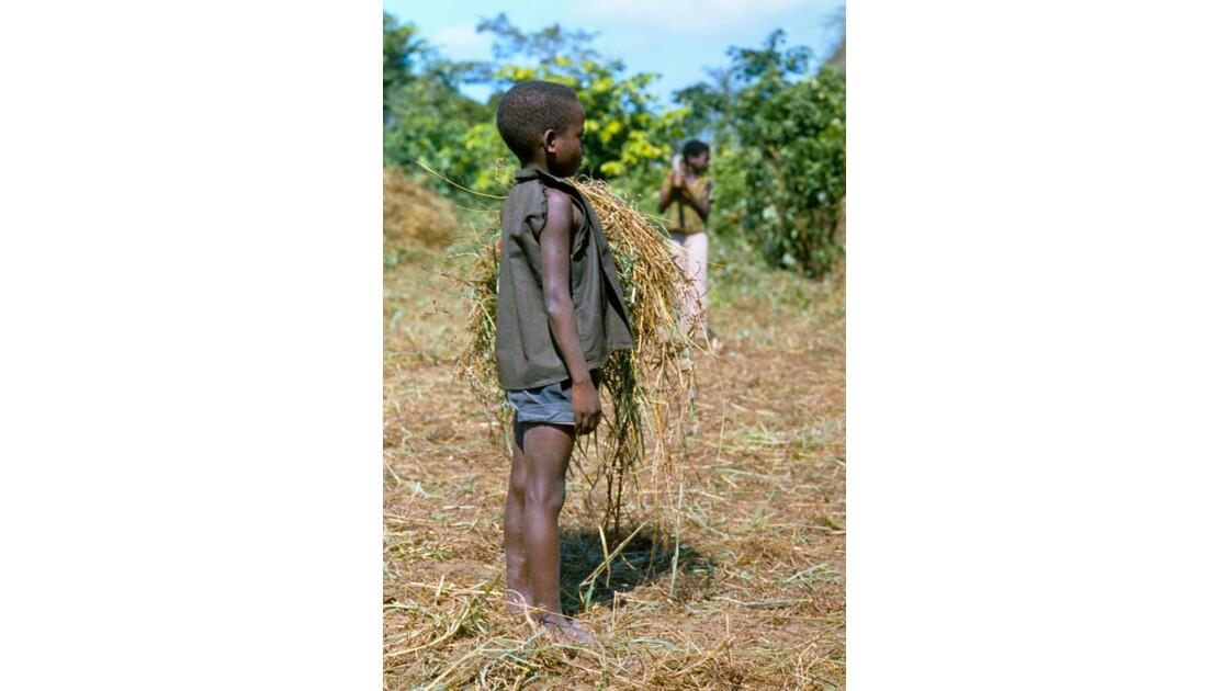 Congo 70 Etoumbi opération retroussons nos manches 2