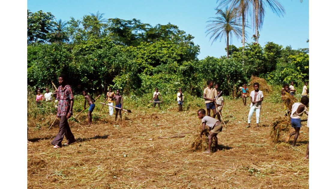 Congo 70 Etoumbi opération retroussons nos manches 3