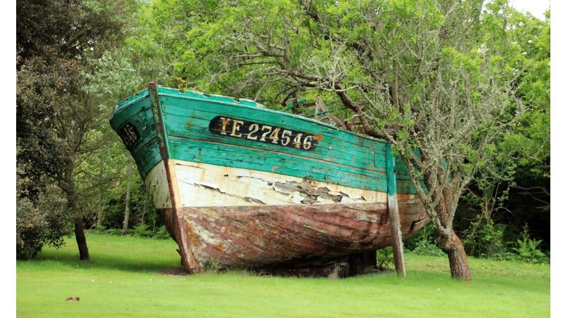 bateau champêtre!