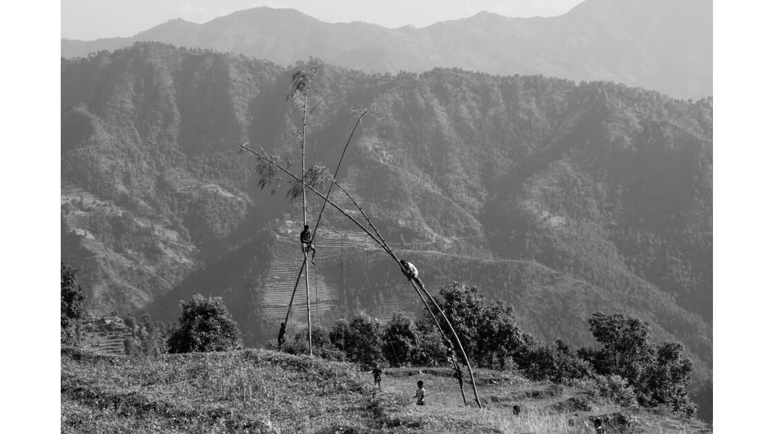 Balançoire de bambou