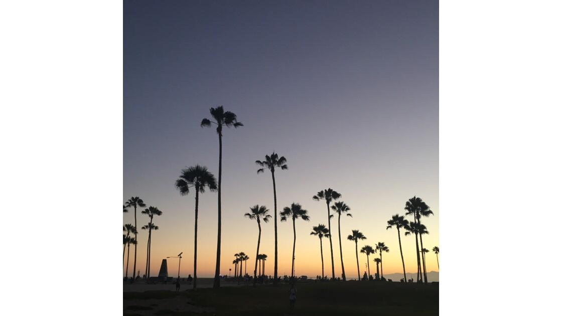Venice Beach Los Angekes