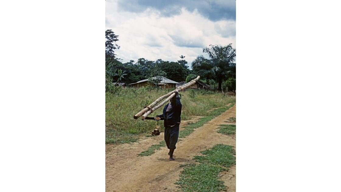 Congo 70 Zanaga-Bambama  Retour de la forêt 2
