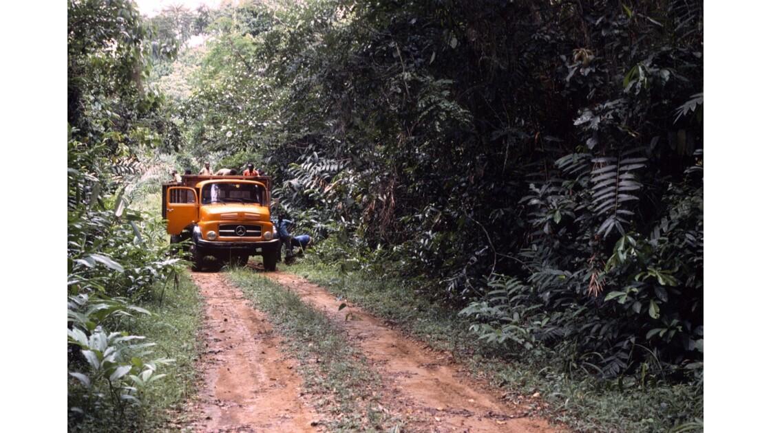 Congo 70 Zanaga-Bambama Arrêt dans la forêt 1