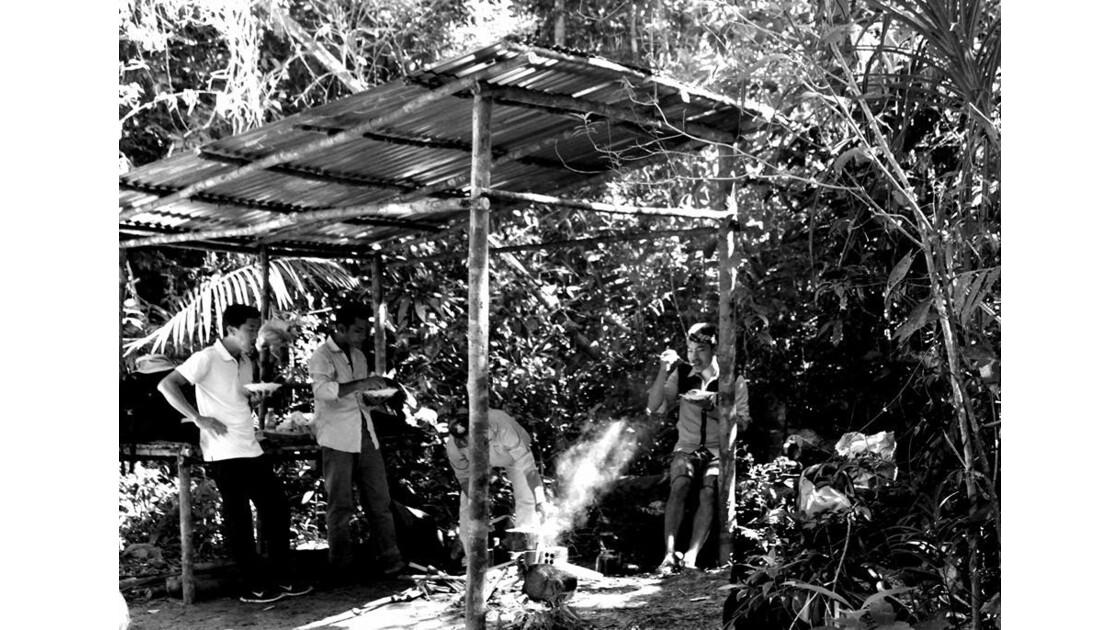Jungle experience