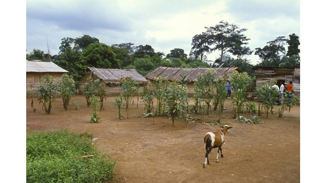 Congo 70 Village entre Zanaga et Sibiti 6