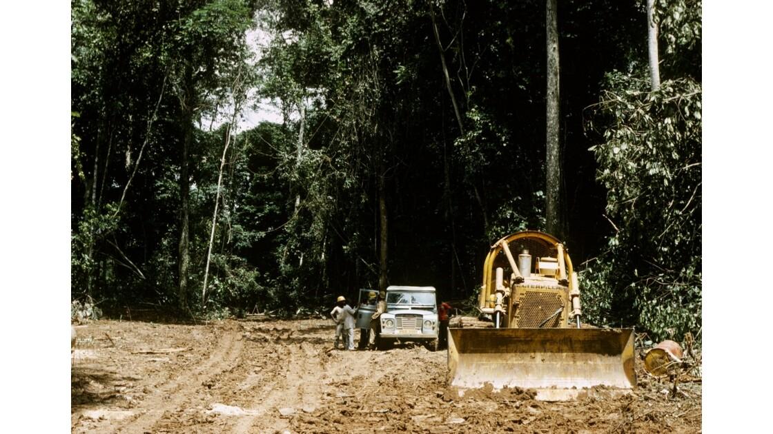 Congo 70 Forêt du Chaillu bourbier 5