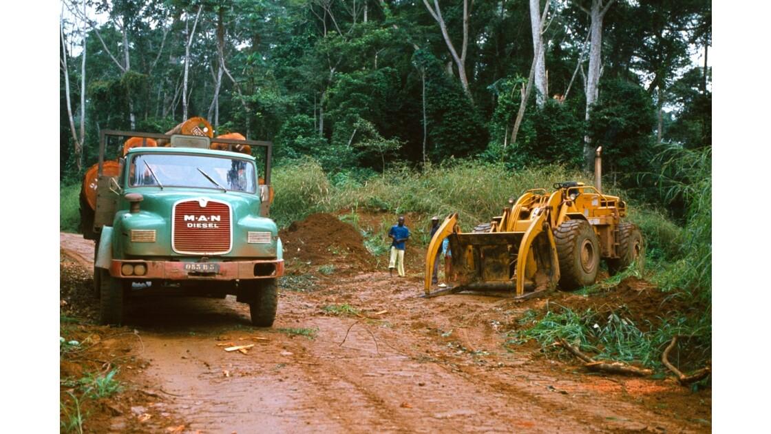 Congo 70 Forêt du Chaillu chargement des grumes 3