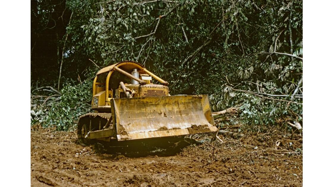 Congo 70 Forêt du Chaillu débardage