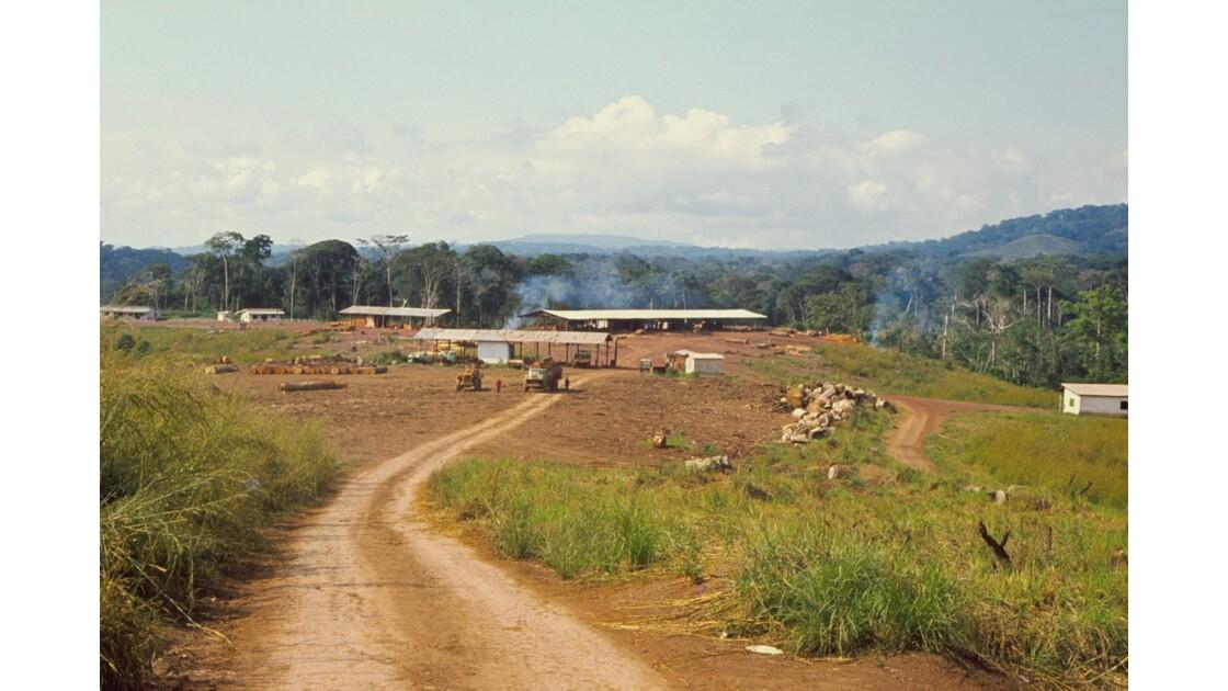 Congo 70 Makabana Scierie de Foralac 2