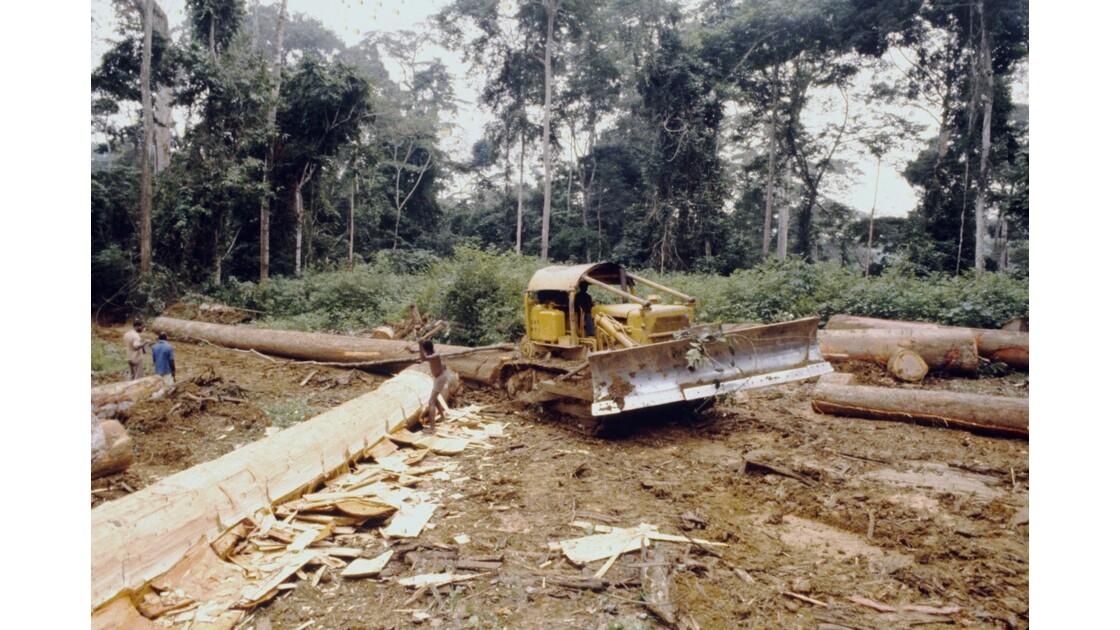Congo 70 Entre Makabana et Mossendjo Chantier Foralac