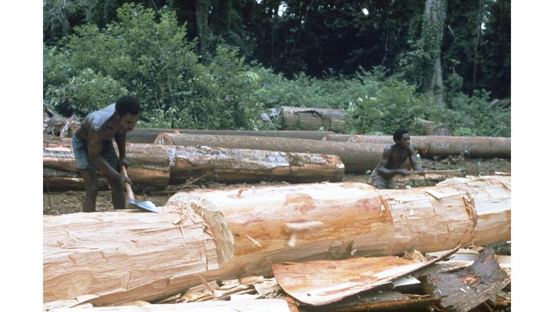 Congo 70 Entre Makabana et Mossendjo Foralac Désaubiérage 1