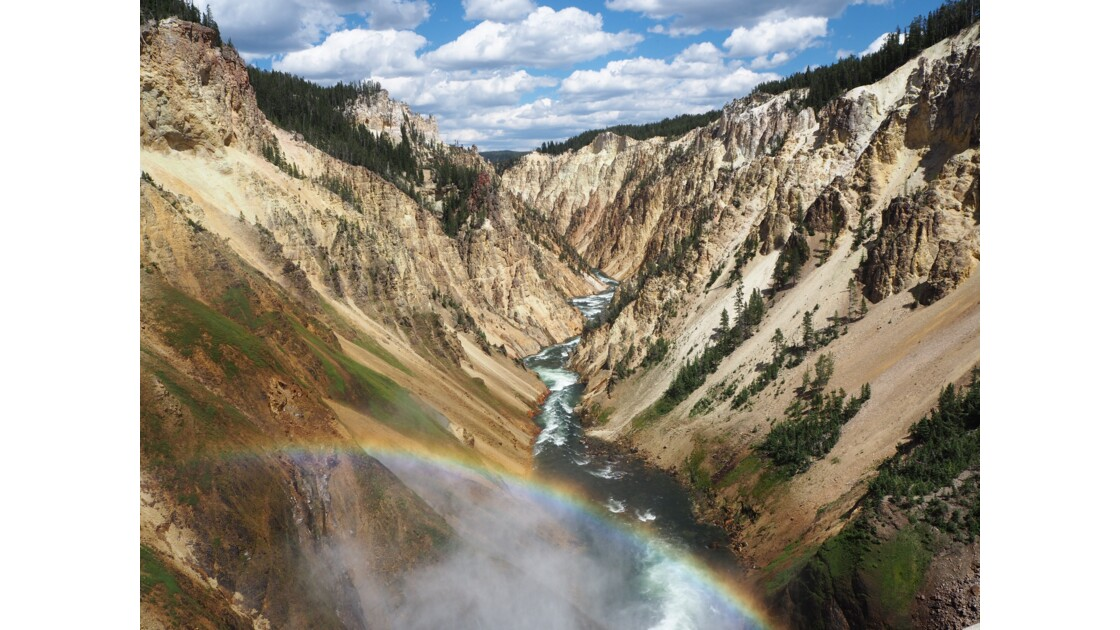 Canyon du Yellowstone