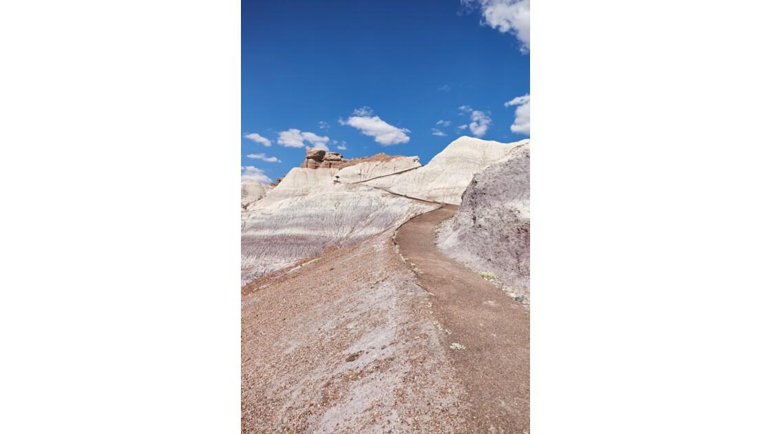 Painted Desert, Blue Mesa - Arizona
