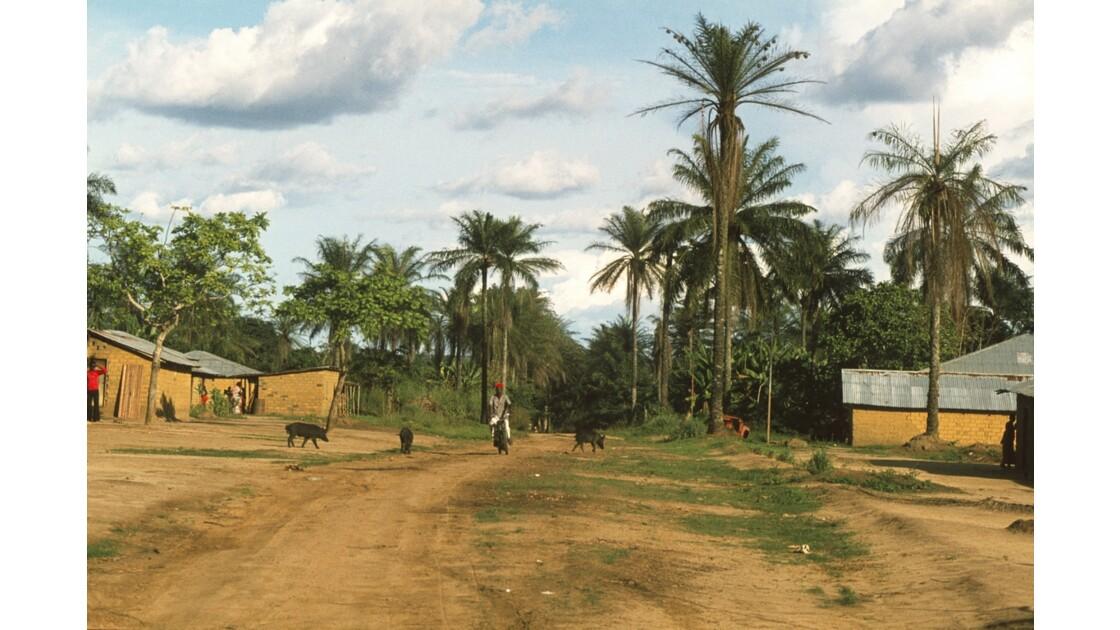 Congo 70  Dongou 3