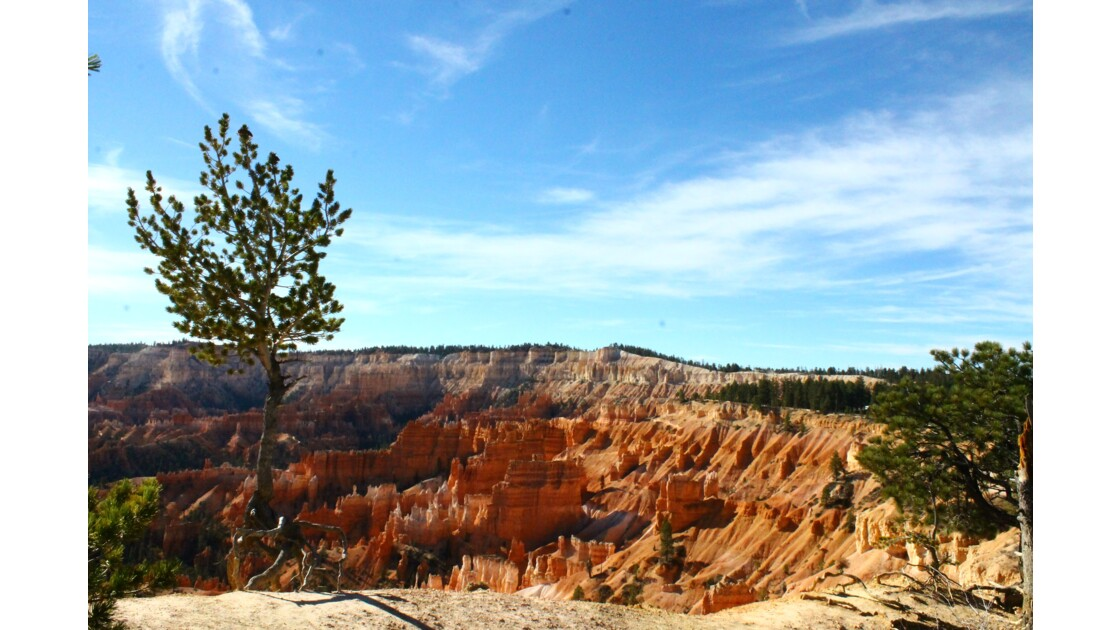 Bryce Canyon skyline