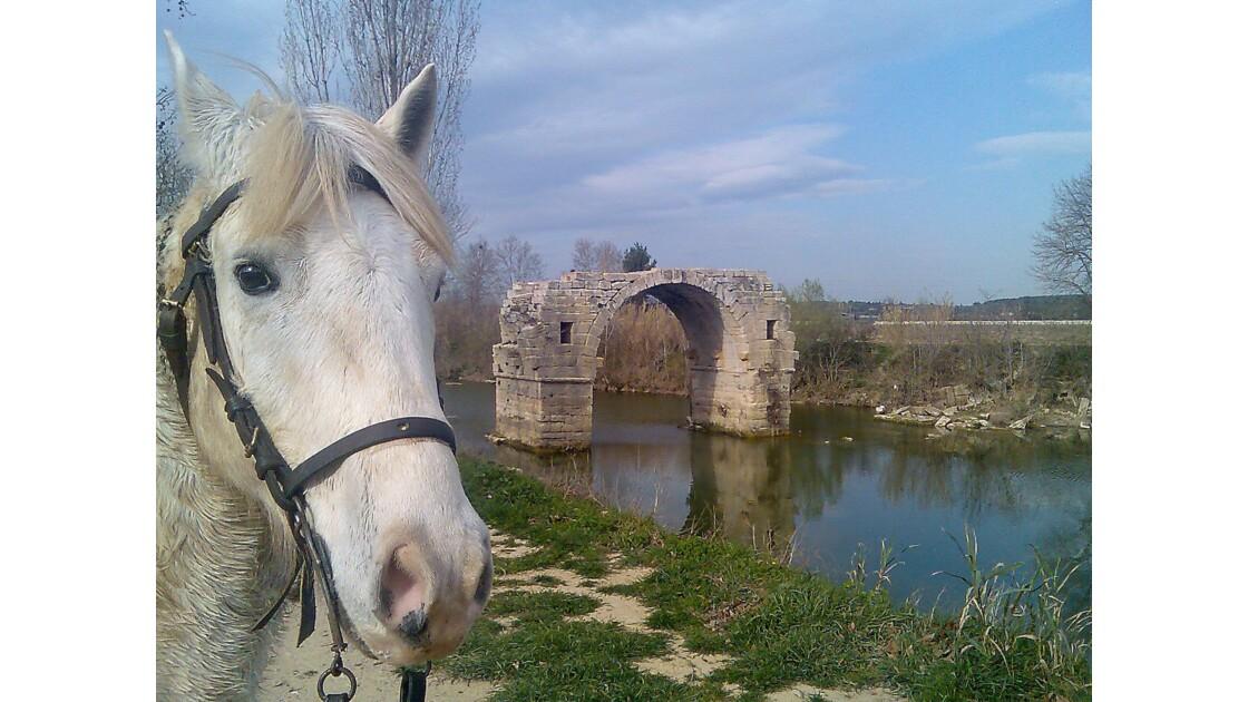 Le pont Courbet  sur le Vidourle