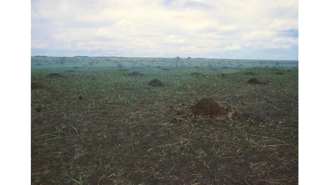 Congo 70  Plateaux Téké Entre Djambala et Lékana 5