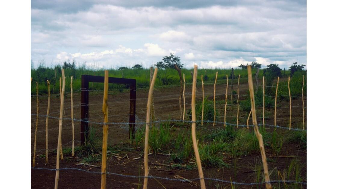 Congo 70 Ranch de la Dihessé 2