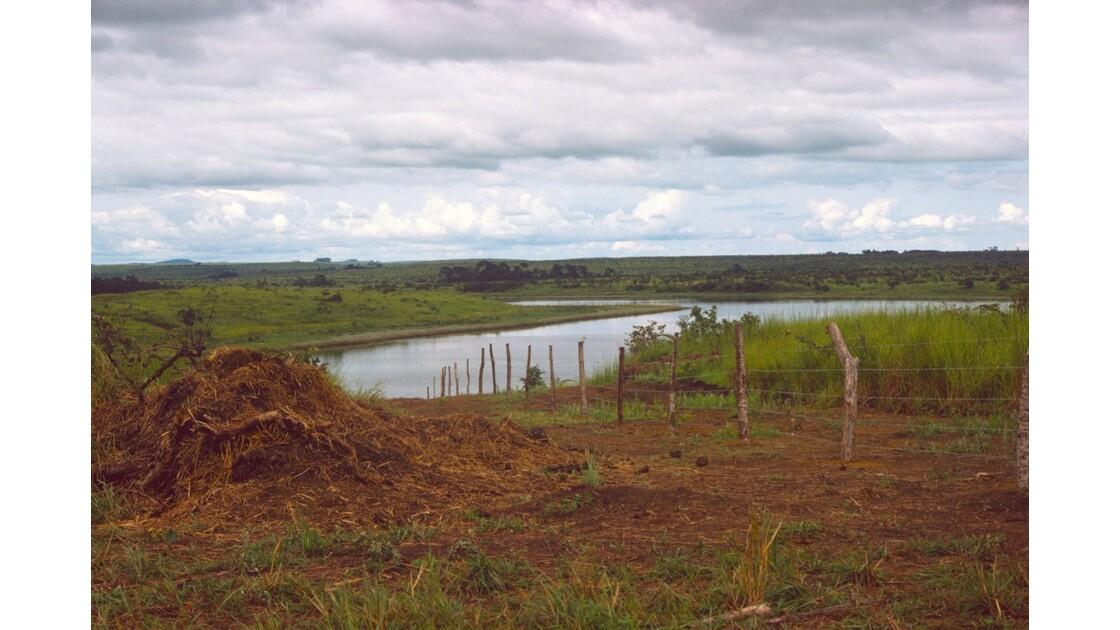 Congo 70 Ranch de la Dihessé  au bord du Niari 1