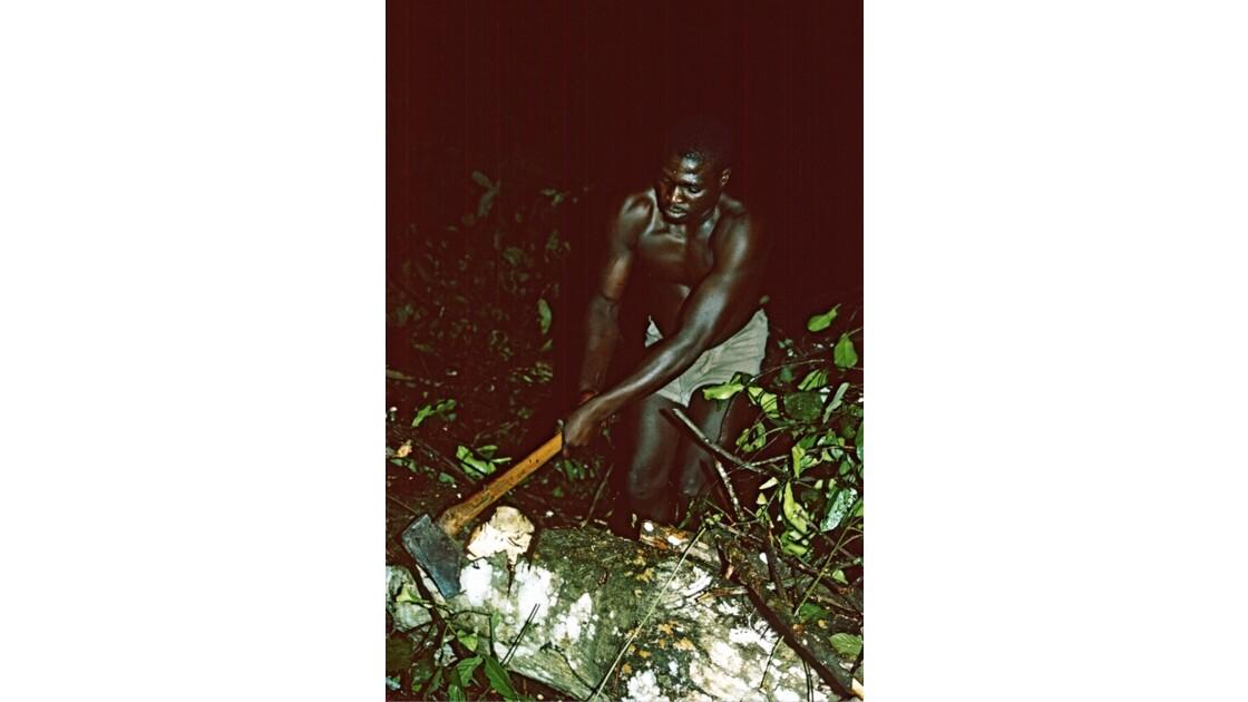 Congo 70 Mayombe  Arbre en travers de la piste 1