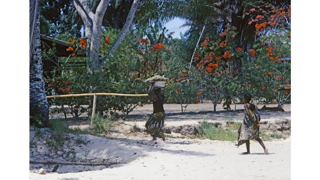 Congo 70 Baie de Loango 7