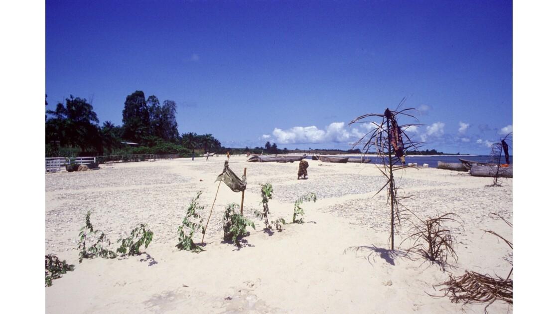 Congo 70 Baie de Loango séchage des sardines 5