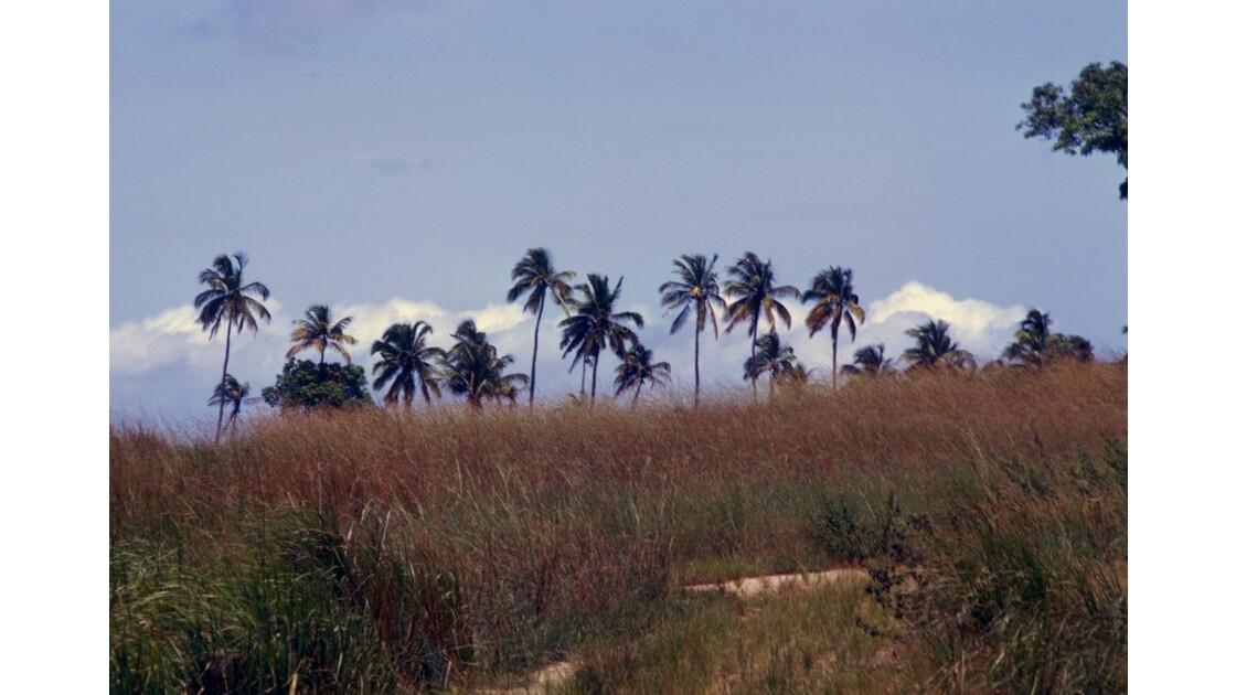 Congo 70 Mission de Loango 5
