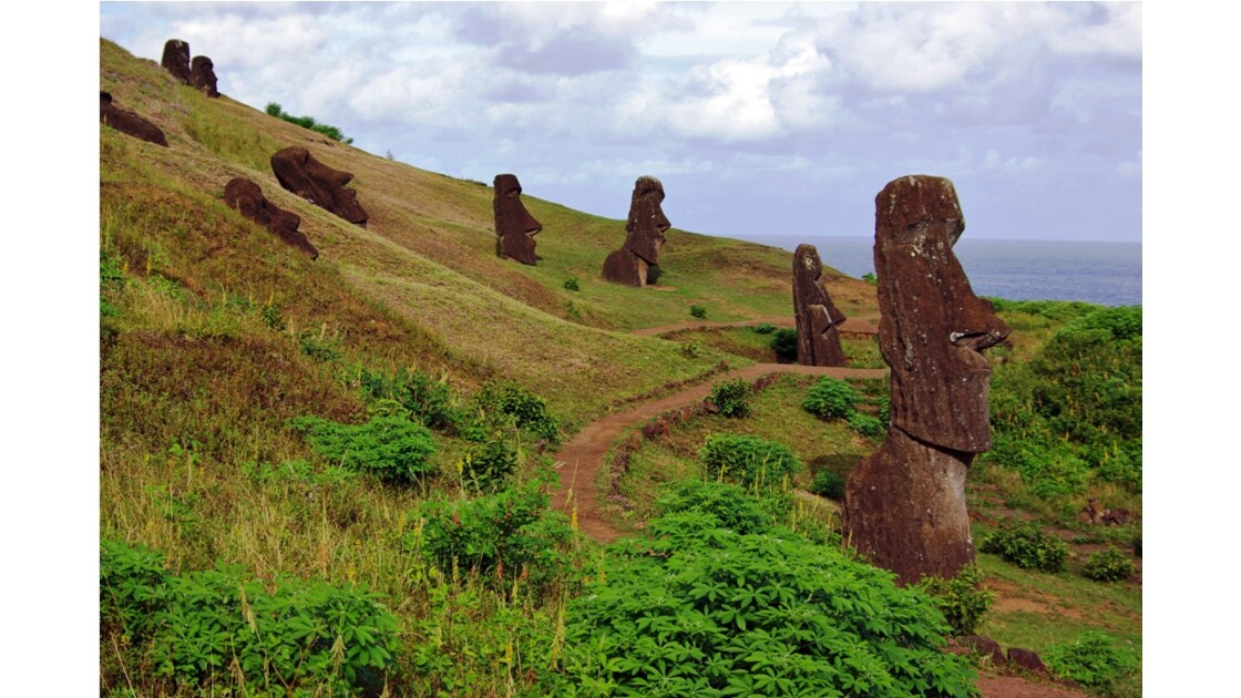 Rano Raraku,  l'île de Pâques
