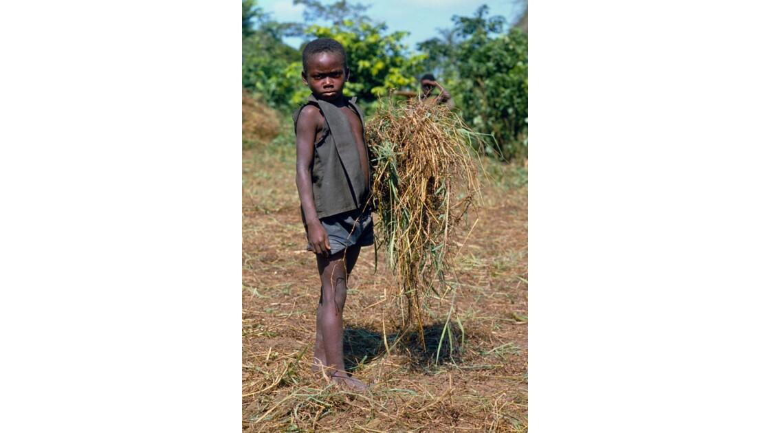Congo 70 Etoumbi opération retroussons nos manches 4