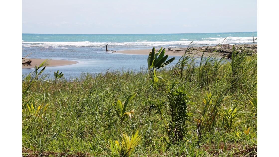 Rio Bananito près de Puerto Viejo