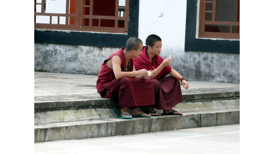 Les jeunes moines