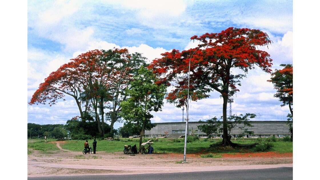 Congo 70 Les flamboyants de Brazzaville Stade de la Révolution