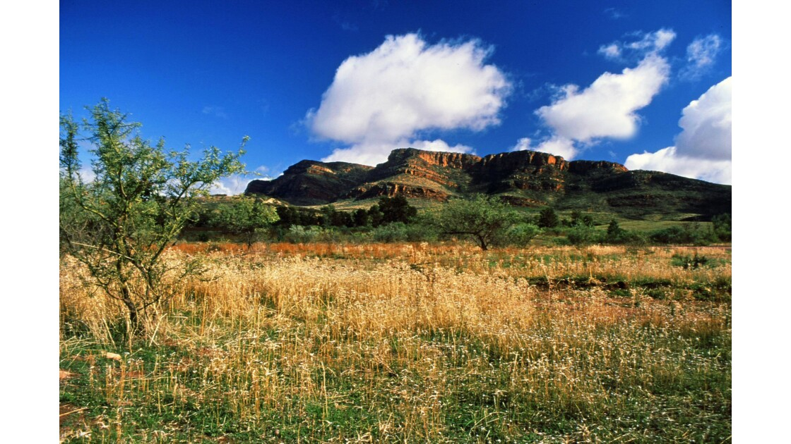 Chaîne des  Findlers Range, Australie