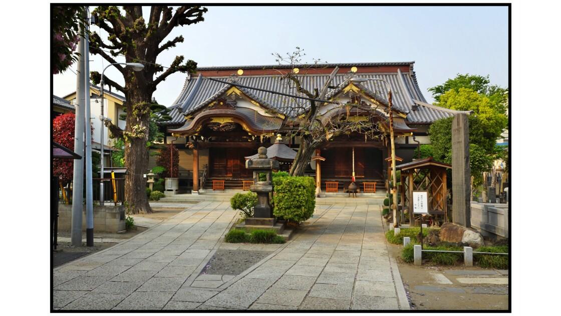 Tokyo - Yanaka - Daienji