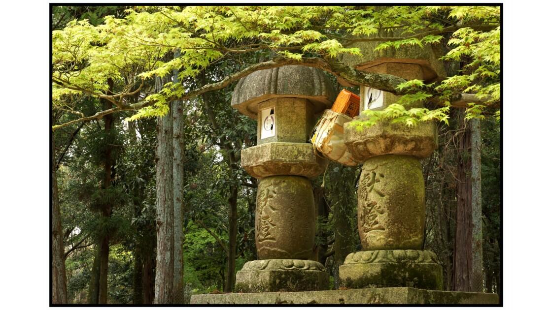 Nara - Tōrō dans le parc
