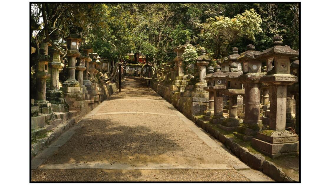 Nara - Tōrō du Kasuga-taisha