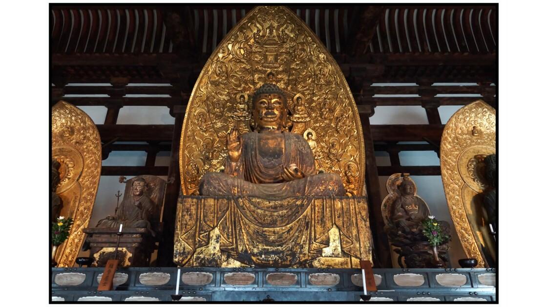 Nara - Kōfuku-ji - Tō-kondō