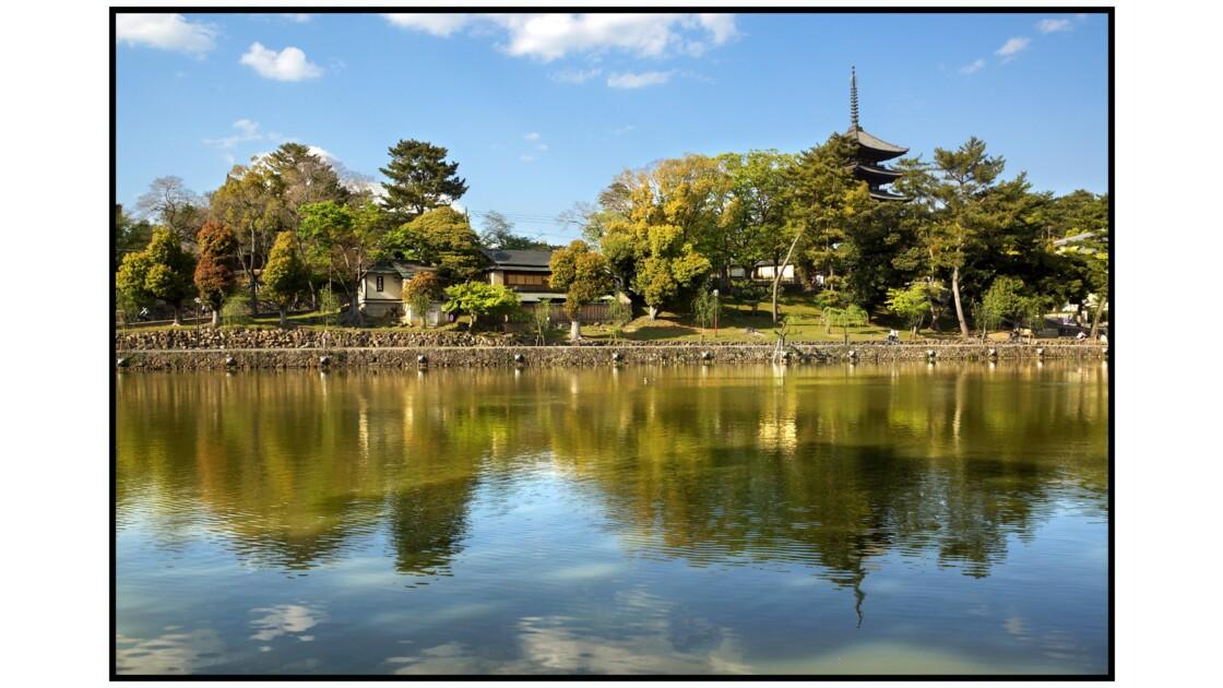 Nara - Kōfuku-ji - Sarusawa-chi et Gojū-no-tō