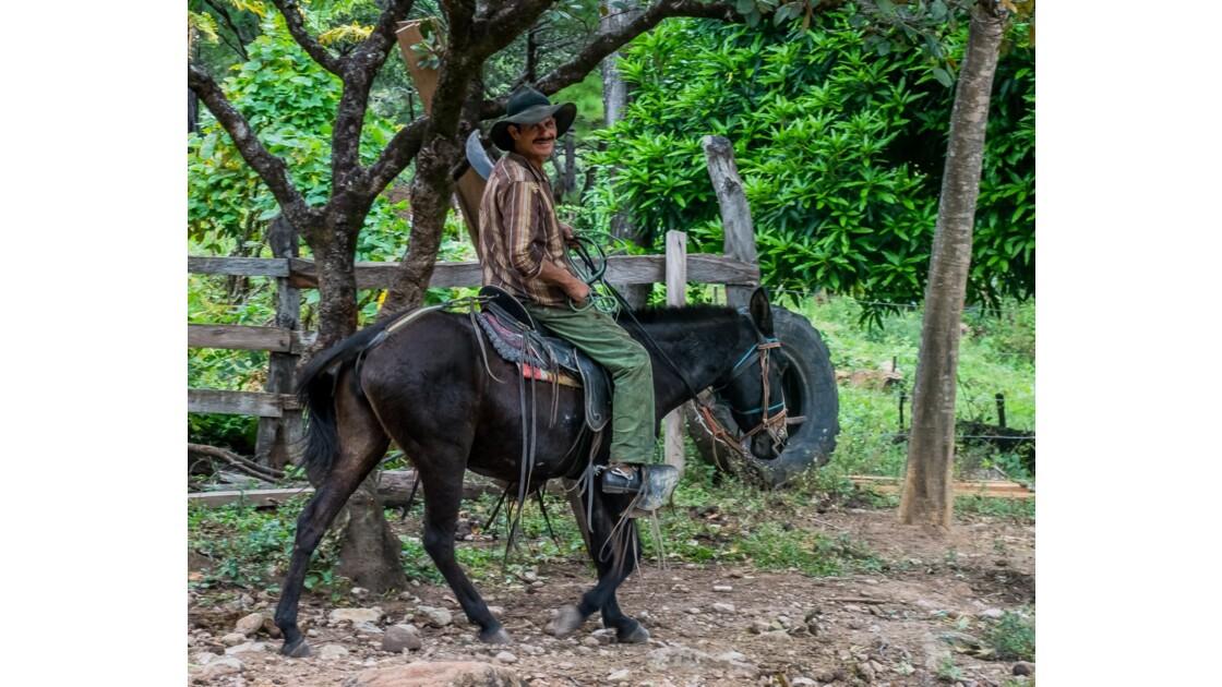 Le moyen de transport le plus commun dans les campagnes