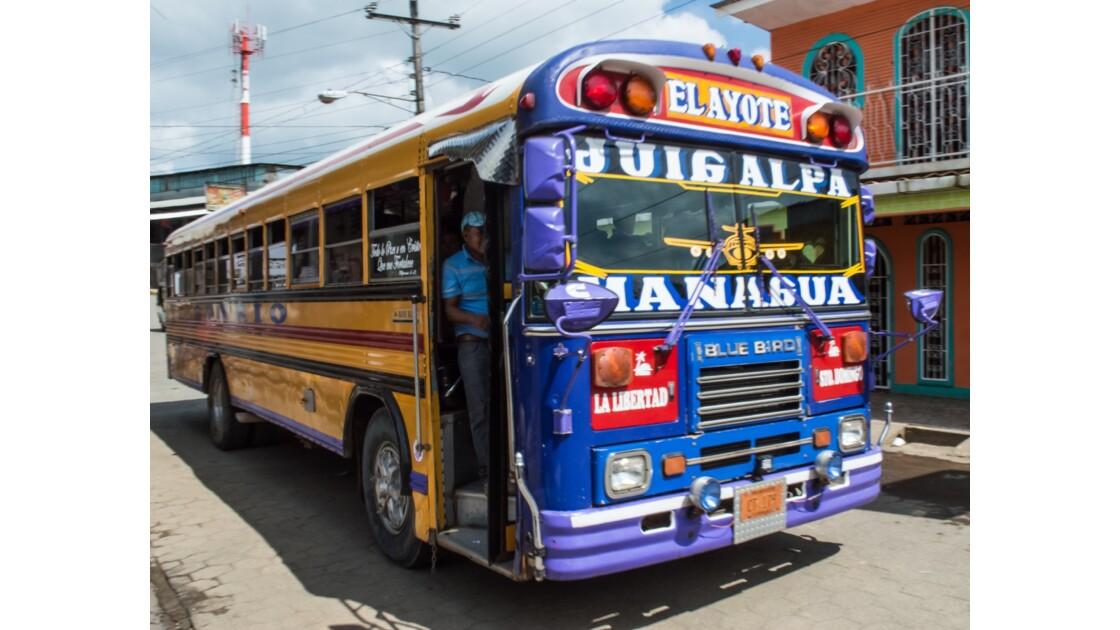 Des transports en commun  très colorés !