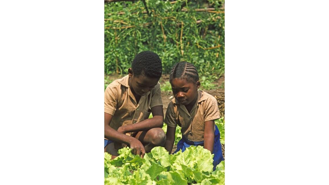 Congo 70 Brazzaville Travaux pratiques 4