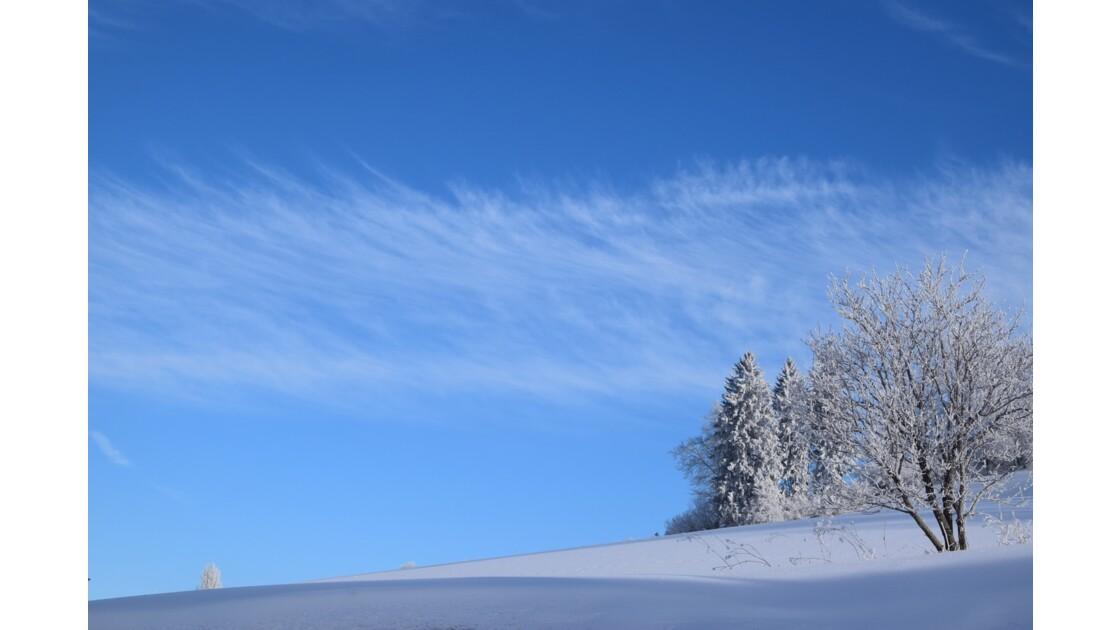 Randonnée raquettes au Mont d'Herba, dans le Haut-Doubs (Montagnes du Jura)
