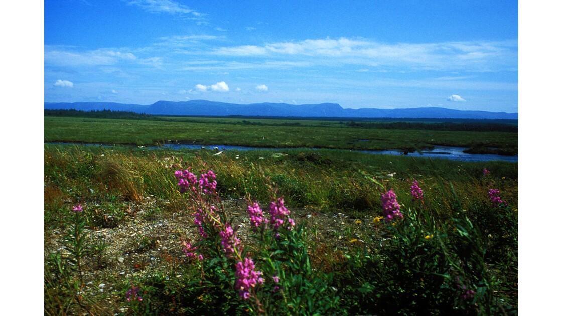 Parc national du Gros Morne