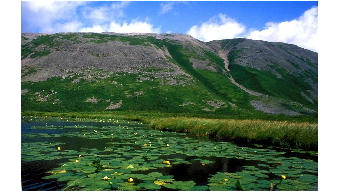 Le mont Gros Morne