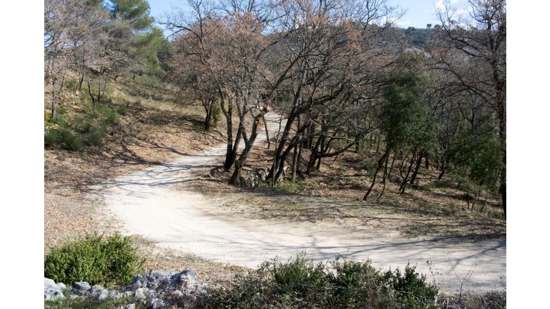 Le petit chemin dans la montagne