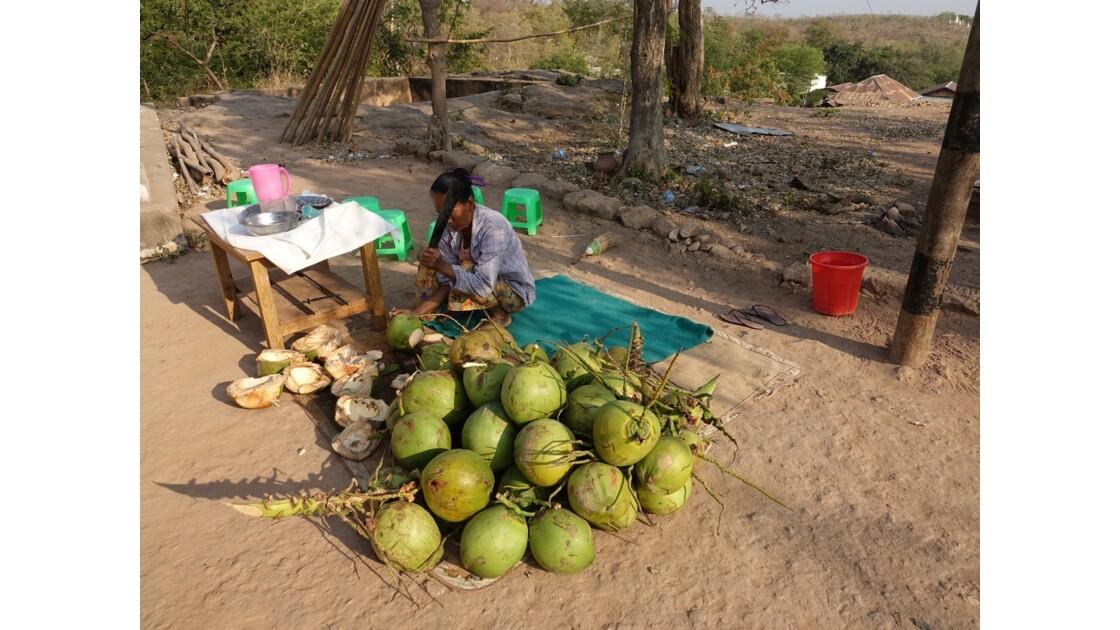 Myanmar Po Win Taung La vendeuse de noix de coco