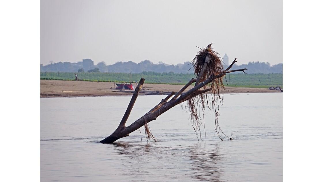 Myanmar Sur le fleuve Irrawaddy 4