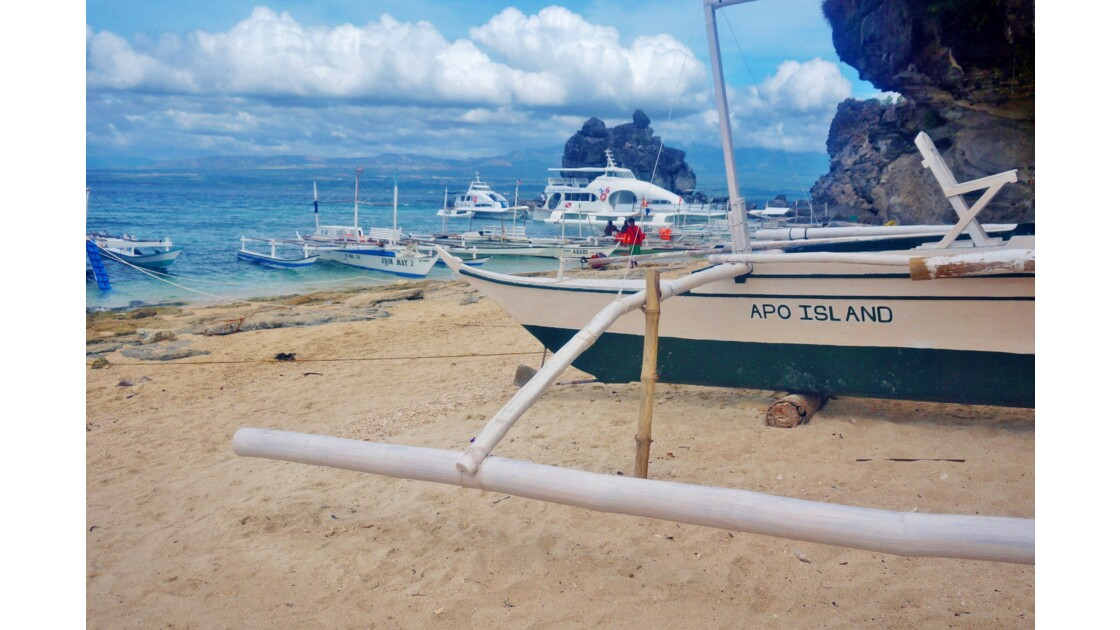 Plage Apo Island
